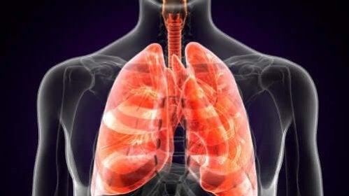 Hábitos que prejudicam a saúde dos pulmões