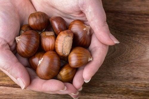 7 propriedades da castanha portuguesa para a saúde do corpo