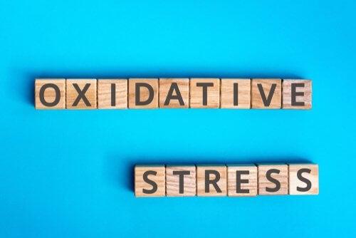Estresse oxidativo, em que consiste?
