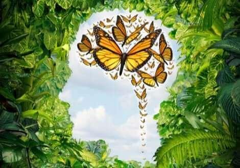 Liberdade de mente e espíritu