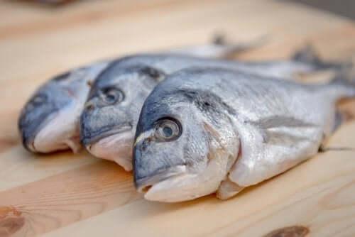 O mercúrio em peixes é perigoso?