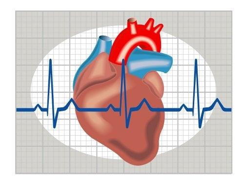 Probelmas de coração e desmaio