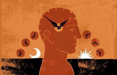 A melatonina e os efeitos no organismo