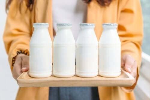 O que é melhor: lácteos integrais ou desnatados?
