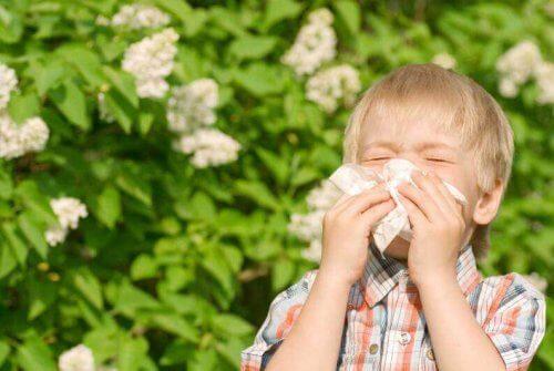 Garotinho com alergia assoa o nariz com um lenço rodeado por plantas no fundo.
