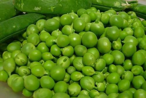 Proteína da ervilha: valor nutricional e benefícios