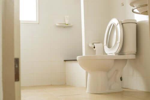 É possível pegar germes em um banheiro público?