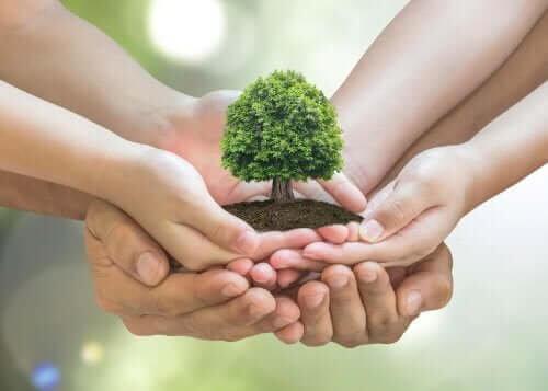 10 dicas para cuidar do meio ambiente em sua casa