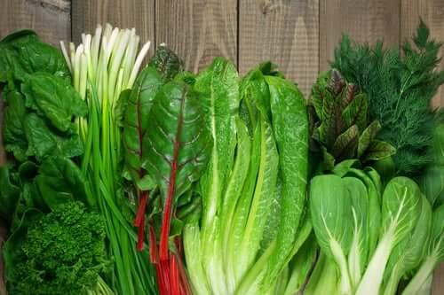 Os vegetais de folhas verdes são os principais representantes de alimentos ricos em ácido fólico.