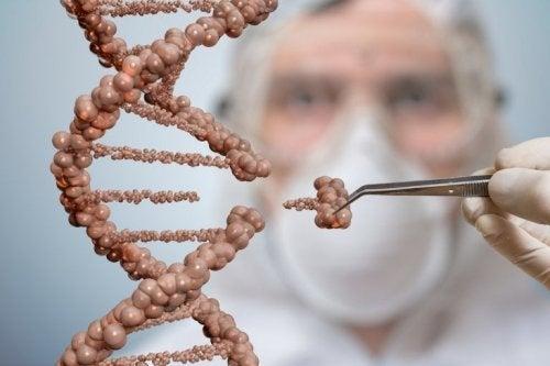 ADN células tronco