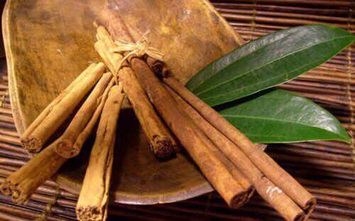 Os benefícios da canela são conhecidos desde os tempos antigos.