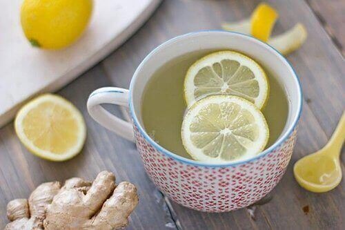 infusão de limão e raiz de gengibre