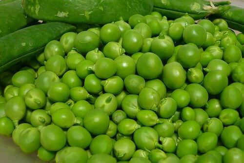 As ervilhas verdes fornecem uma grande quantidade de proteínas e fibras vegetais