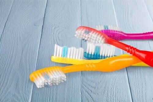 Para garantir uma boa higiene bucal, as escovas de dentes devem ser mantidas limpas e secas.