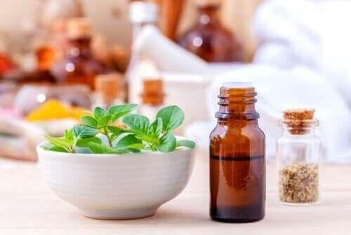 Outro dos grandes antifúngicos naturais é o óleo de orégano silvestre.