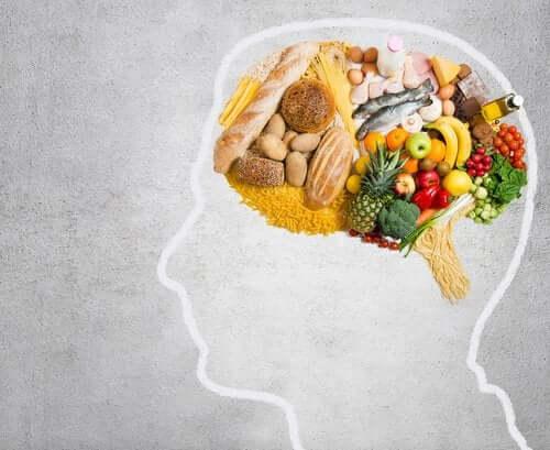 Quais são as gorduras essenciais para o cérebro?