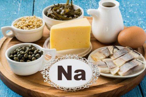 Alimentos fonte de sódio