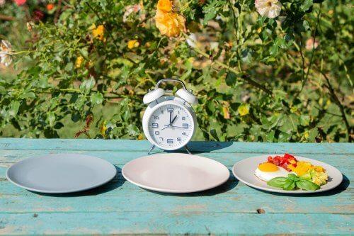 Cronograma de refeições diárias