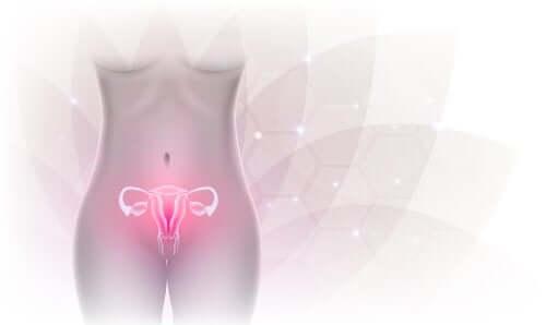 Insuficiência ovariana primária