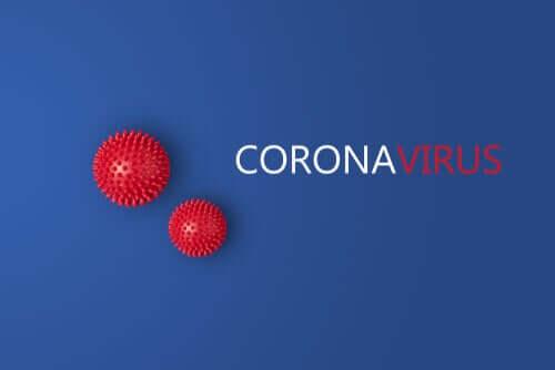 Novo estudo sugere que há duas cepas do coronavírus