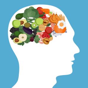 A relação entre a dieta e o rendimento intelectual