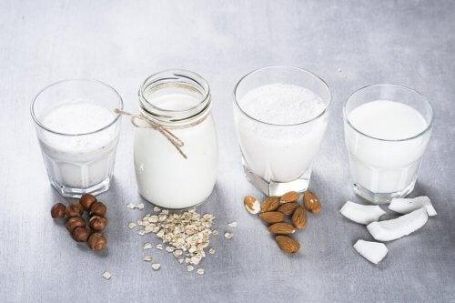 Tipos de leites vegetais