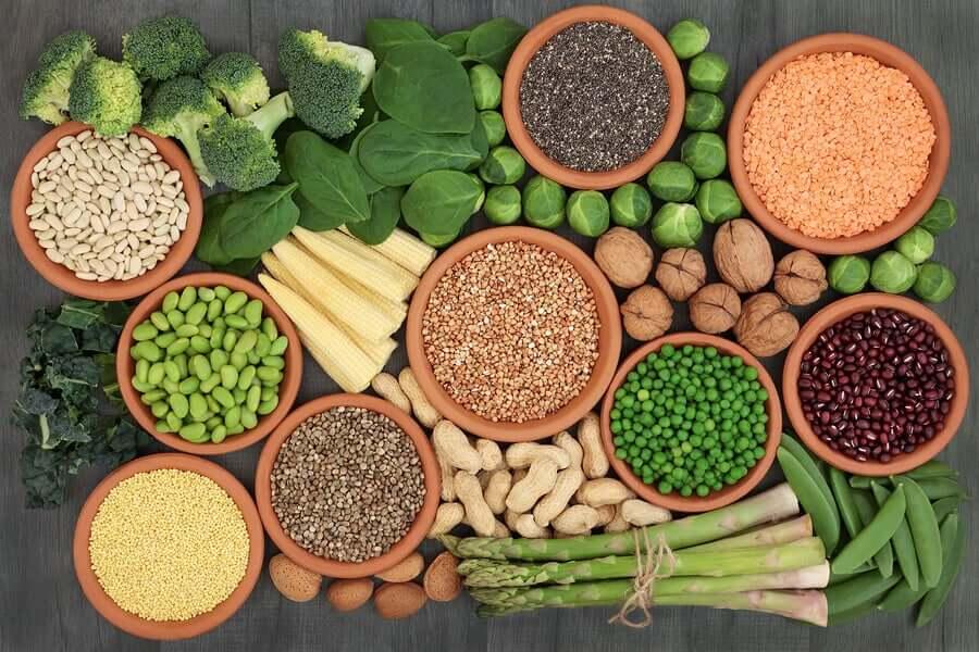Alimentos ricos em proteínas vegetais ideais para veganos