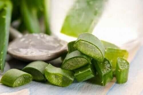 O aloe vera é um dos remédios naturais para a dermatite seborreica