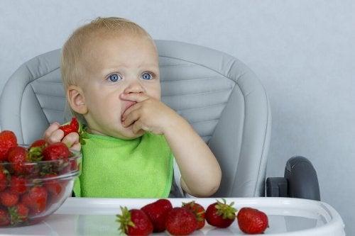 Bebê comendo morangos