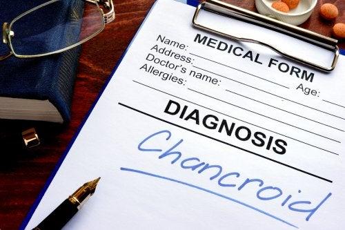 Cancroide: sintomas e tratamento