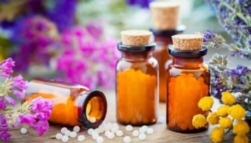 Suplementos para o tratamento da obesidade
