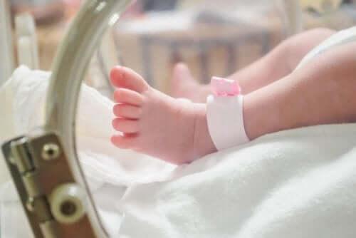 Incubadora para o cuidado do recém-nascido prematuro