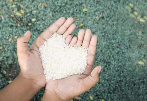 Mãos segurando arroz