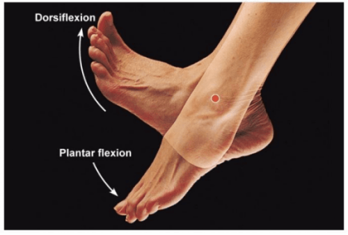 Movimentos dos pés