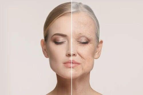 Com que idade começamos a envelhecer?