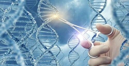 Aprendendo sobre as mutações genéticas