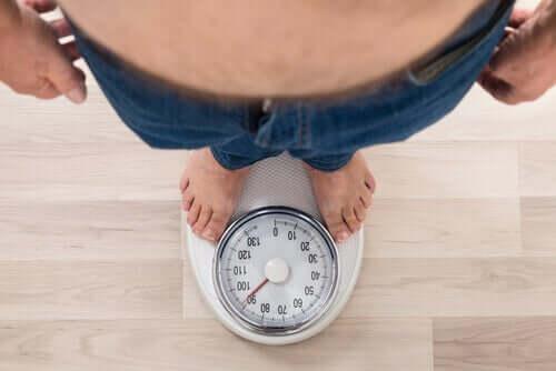 Obesidade, tendências e recomendações de consumo