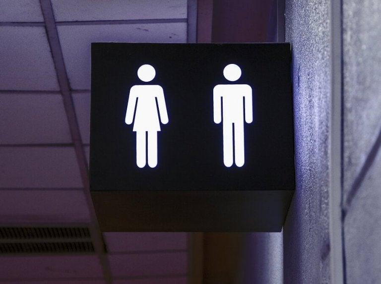 Relações sexuais em locais públicos: vantagens e desvantagens