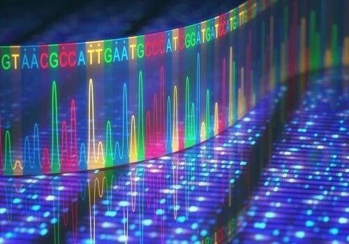 Transcrição de RNA