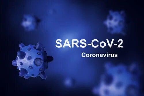 Qual é a origem do coronavírus e por que ele não pôde ser erradicado?