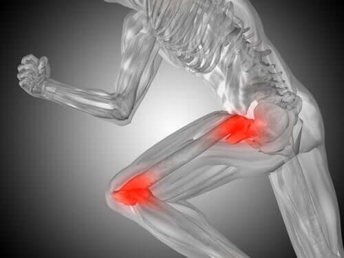 Articulações da perna