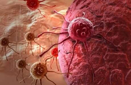 O que devemos saber sobre o câncer?
