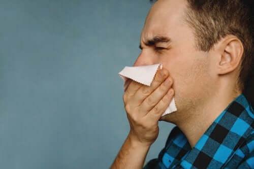 4 remédios caseiros para remover as crostas do nariz