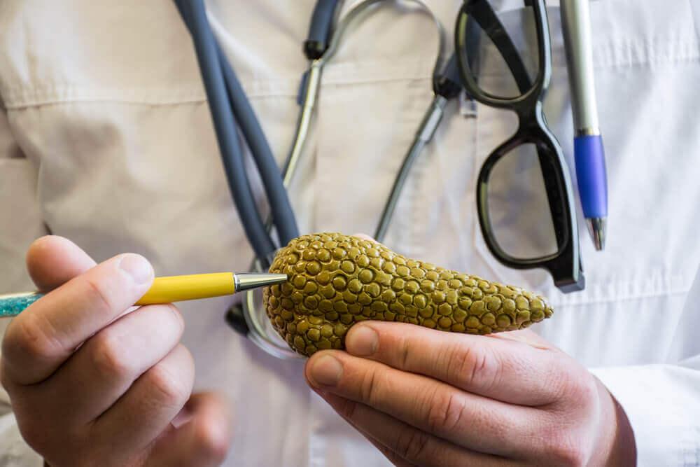 Pâncreas e insulina