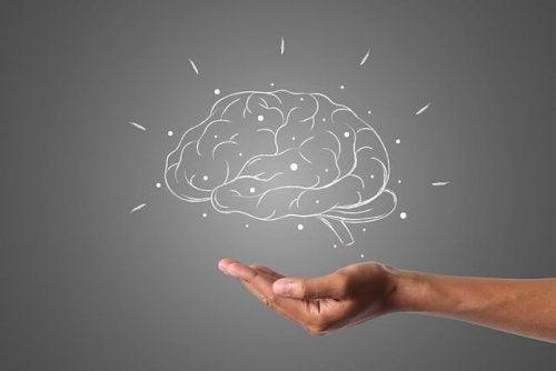 Tumor cerebral: tipos, sintomas, causas e tratamentos