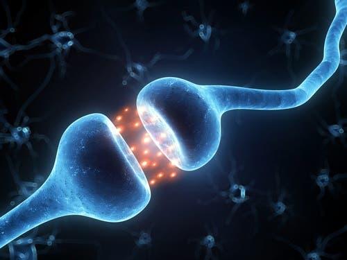 Ligações entre neurônios