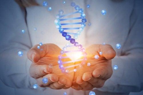 O projeto genoma humano