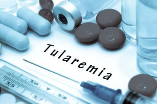 Tularemia: sintomas e causas