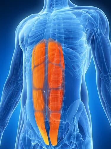 O que é uma lesão abdominal lateral?