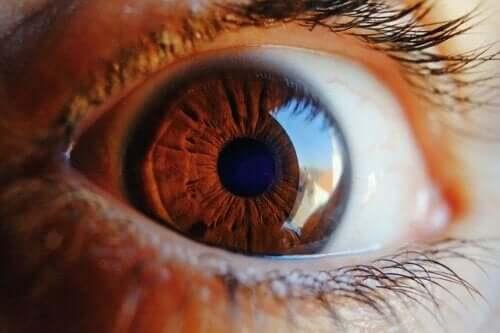 Você sabe como o olho se limpa?